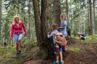 Sommerurlaub im Alpbachtal in Tirol bei der Familie Bischofer